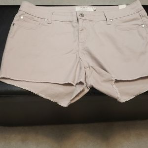 Torrid purple shorts